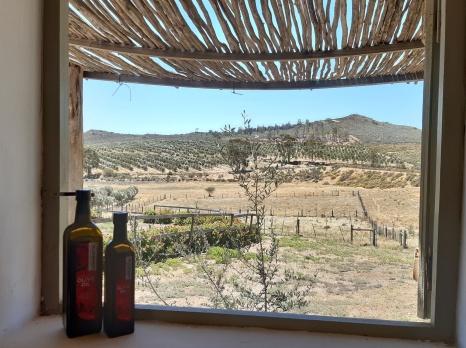 Shop-Fenster mit Aussicht